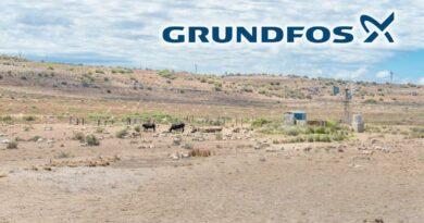 Grundfos_1113