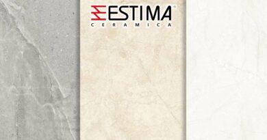 Estima_0403